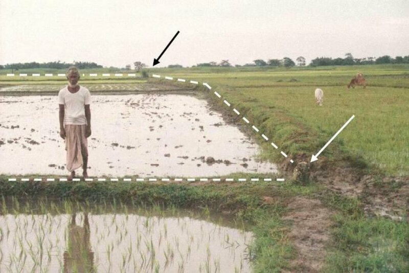 Dashed line is an international border; Bangladeshi farmer in foreground