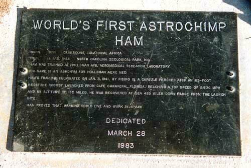 The grave of Ham, the astrochimp.