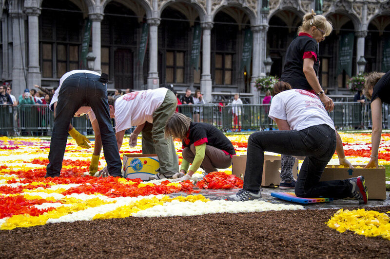 Volunteers carefully place hundreds of thousands of flowers.