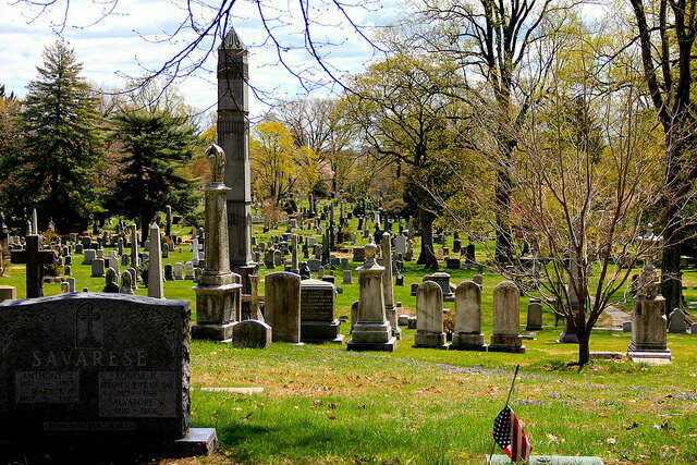 Graves at Green-Wood Cemetery.