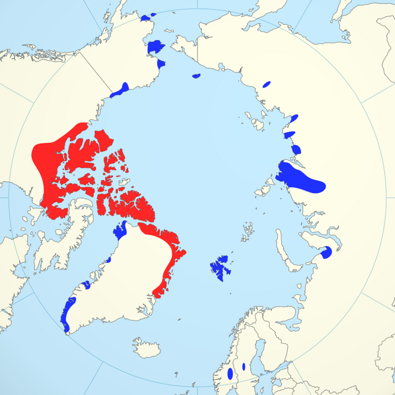 A musk ox distribution map. Red represents the species' natural range, while blue denotes introduced populations. Note the broad swath of red in Greenland, and the small blue dots in Sweden and Norway.