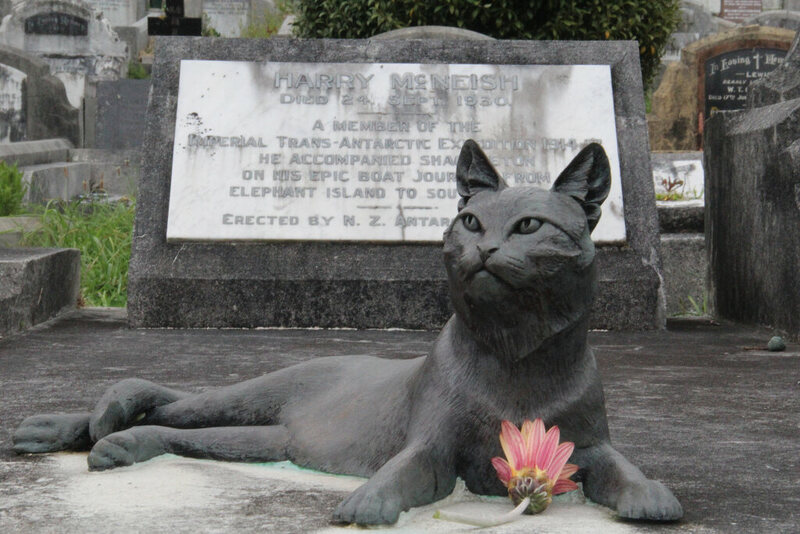 Mrs Chippy, resting on Harry McNeish's grave.