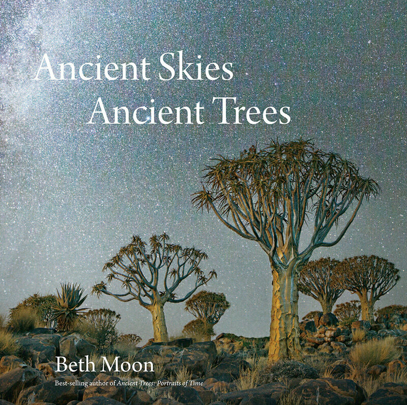 The cover to <em>Ancient Skies Ancient Trees.</em>