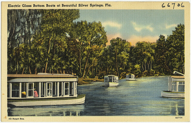 Silver Springs State Park postcard circa 1930. Around this time, the rhesus macaque colony was brought to the park as part of a tour boat attraction.