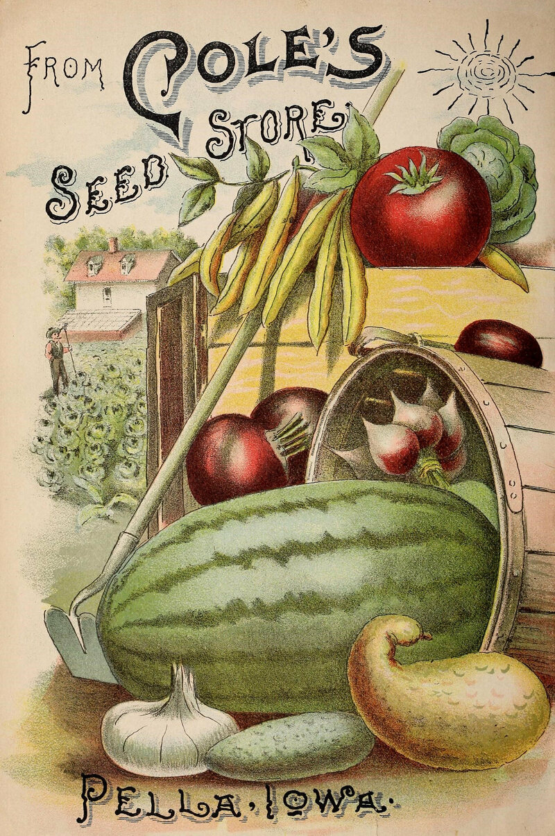 An advertisement for Cole's Seed Store, from their 1892 Garden Annual.