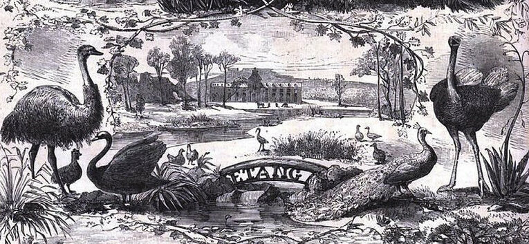 The Jardin d' Acclimatation, illustrated in Le Monde in 1861, brought emus, goats, and exotic plants to Paris.