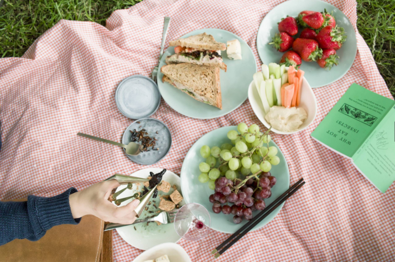 Welcome to the perfect bug picnic.