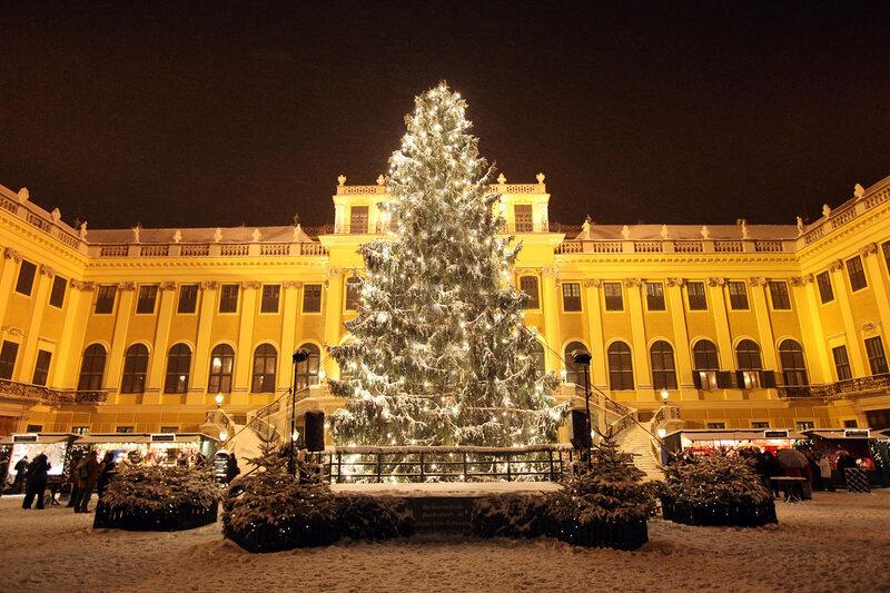 In Austria Zoo Elephants Eat Leftover Christmas Trees