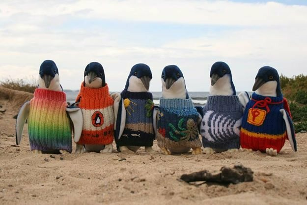 To raise money, the Penguin Foundation put some extra sweaters on toy penguins and sold them.