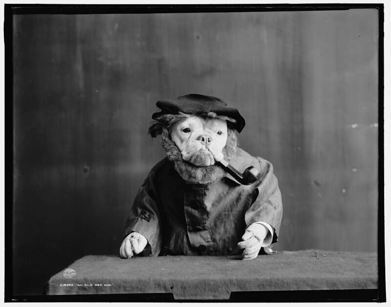 """An Old Sea Dog,"" from 1905."