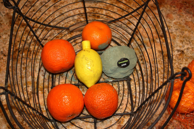 A jif lemon surrounded by oranges.