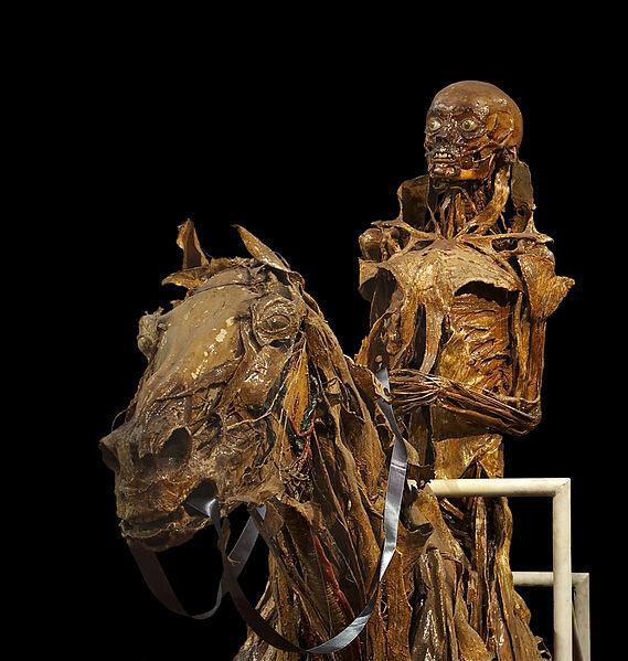 Écorché of a horse and his rider by anatomist Honoré Fragonard.