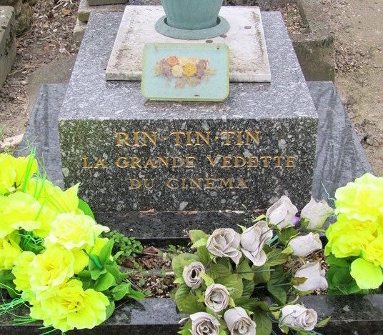 The Final Resting Places Of 7 Famous Dogs