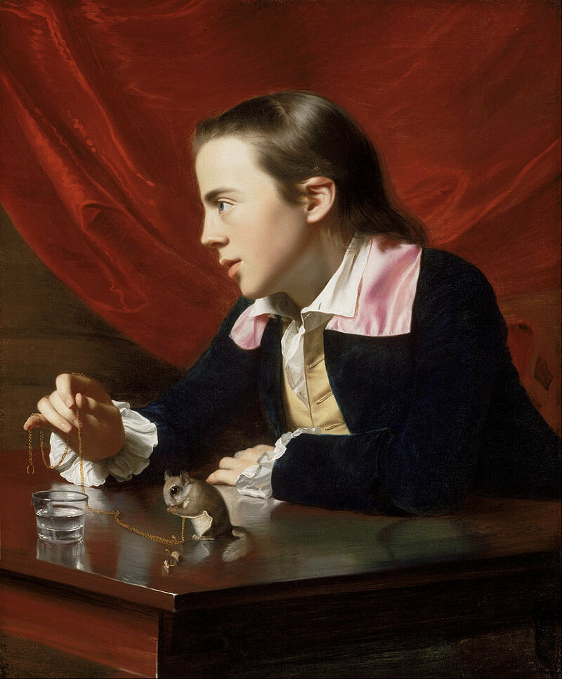 John Singleton Copley's <em>A Boy with a Flying Squirrel</em>.