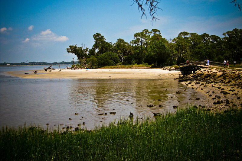 Jekyll Island, paradise to both humans and alligators.