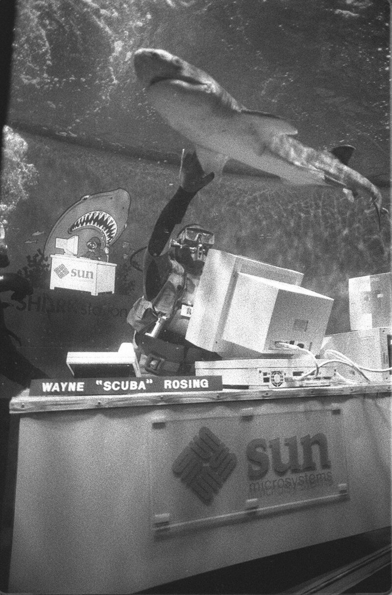 April 1, 1991: Scott McNealy had his office set up in the shark tank at the Steinhardt Aquarium in San Francisco as part of the annual Sun Microsystems April Fool's Day prank.