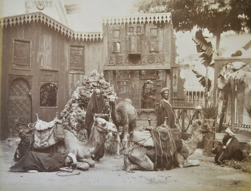 Camels in a courtyard.