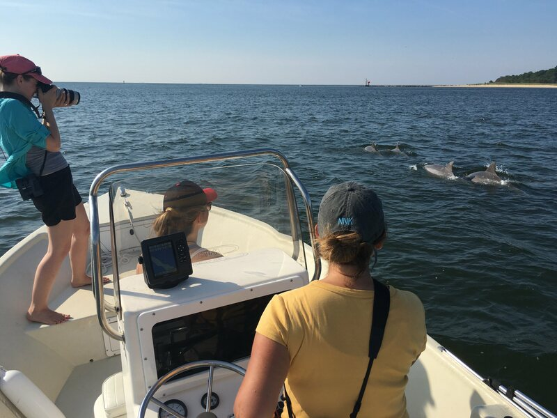 Ann-Marie Jacoby photographs a Potomac-Chesapeake dolphin as Dr. Janet Mann drives.