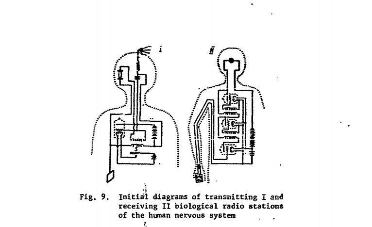 Kazhinskiy's sketch of the human biological radio transmitter.