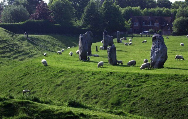 The stones at Avebury, hanging with some sheep.