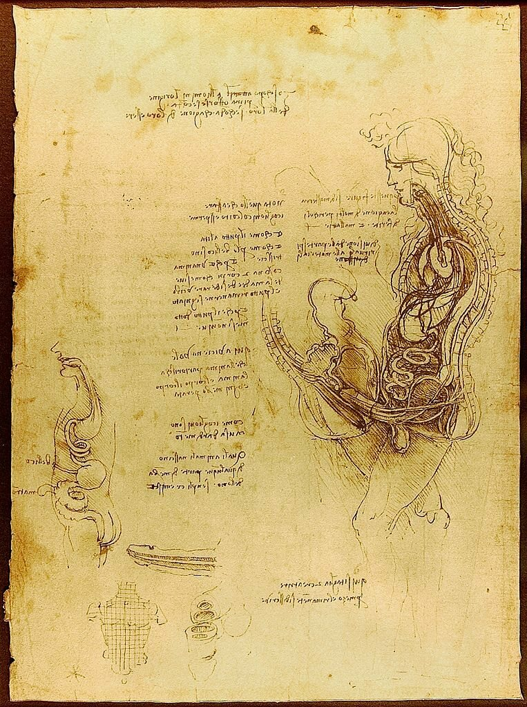 A hemisection of a man and a woman in coitus, Leonardo da Vinci., c. 1492.