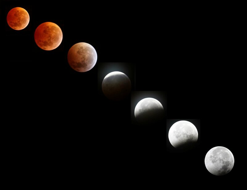 A composite image shows a lunar eclipse sequence from December 2010 in Jacksonville, Florida.