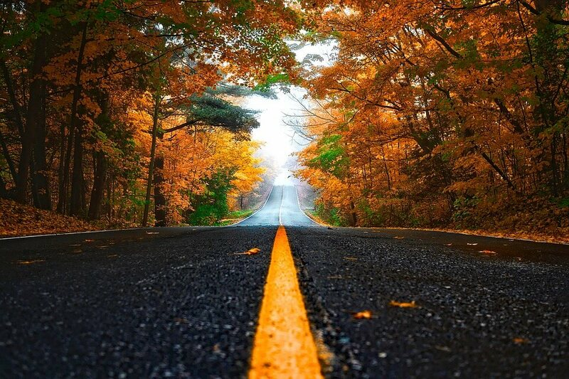 Just about everyone can agree on the beauty of an autumn drive.