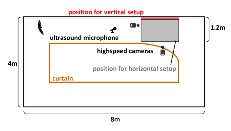 The experimental setup for the vertical plate study.