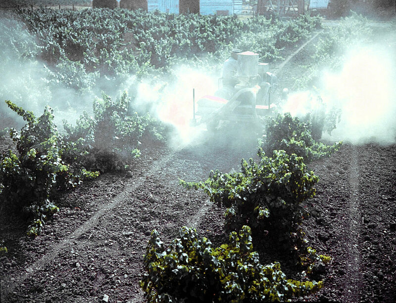A farmer spraying pesticide on his crops.