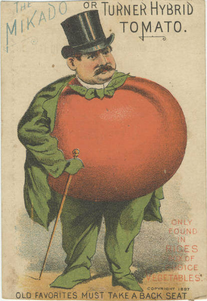 A Victorian-era trade card for tomato seeds, 1898.