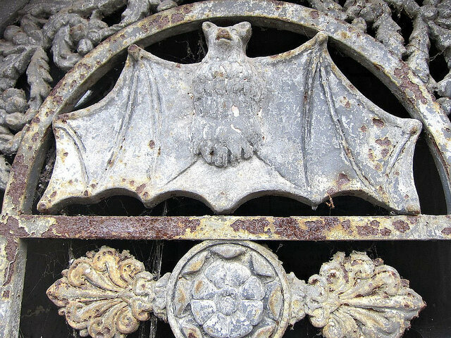 Bat in Père Lachaise Cemetery in Paris
