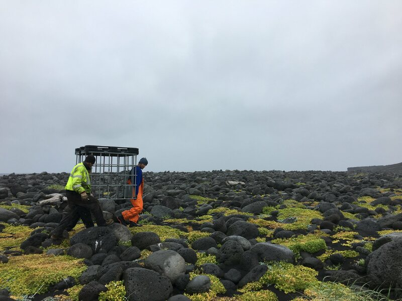 Team members carry a water tank frame along the shore. Everything on Surtsey has to be carried by hand.