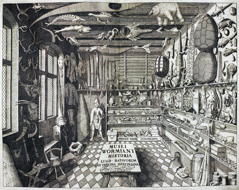 Cabinets of curiosity were encyclopedic collections of natural, archaeological, and ethnographic objects. This drawing shows a 17th-century Danish example.
