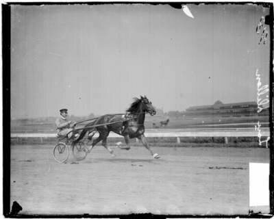 C.K.G Billings is photographed here with one of his most famous racehorses, Lou Dillon.