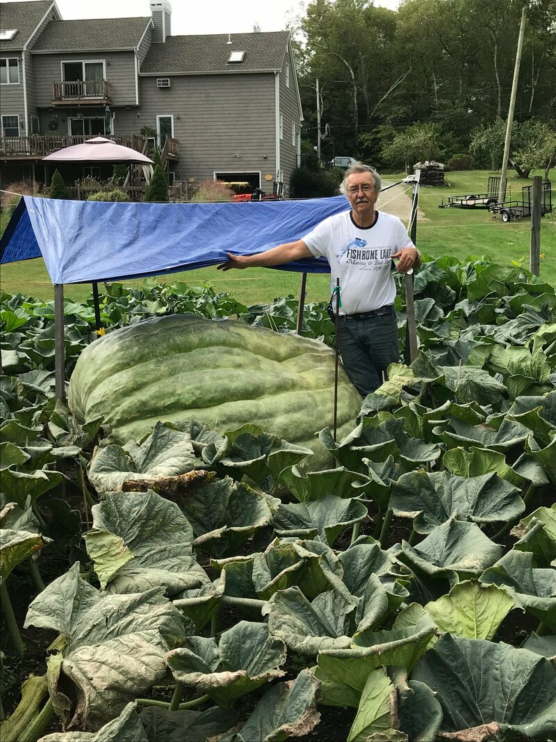 Joe Jutras stands with the green squash in his yard in North Scituate, Rhode Island.
