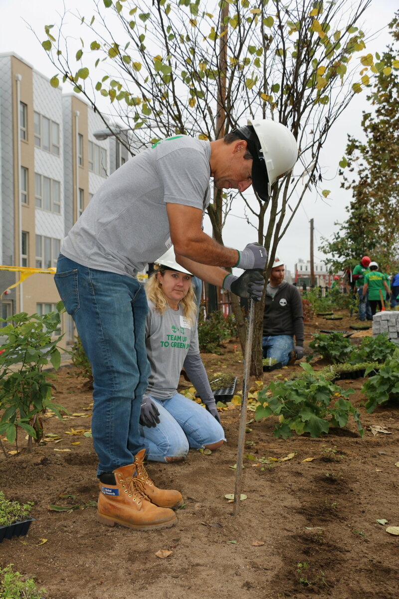 Together, workers spread over 65 yards of topsoil and planted over 800 plants.