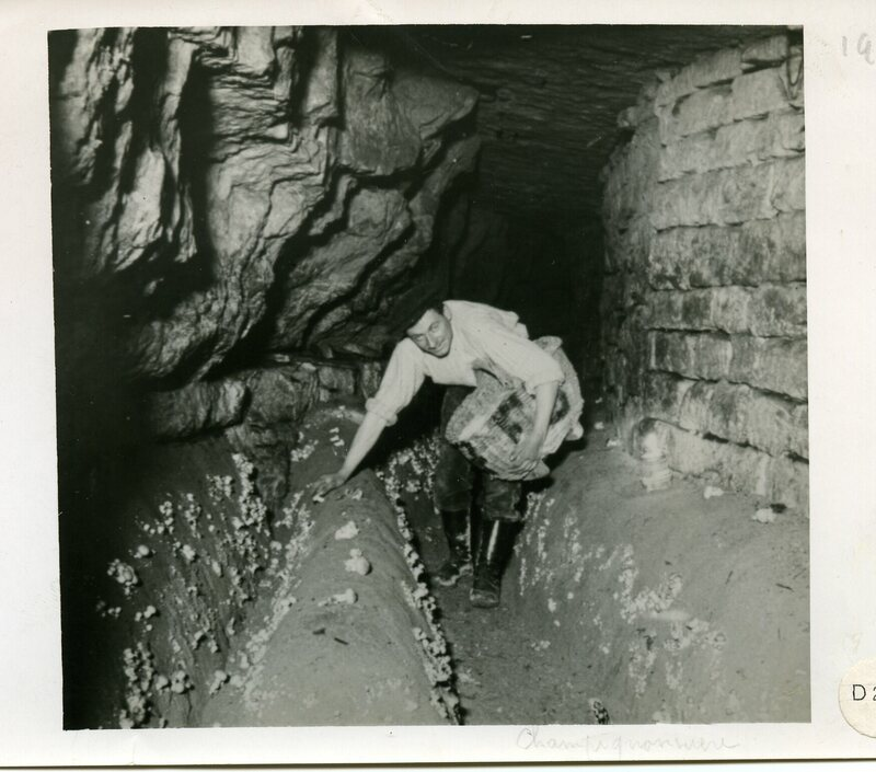 A cheery worker in a limestone quarry.