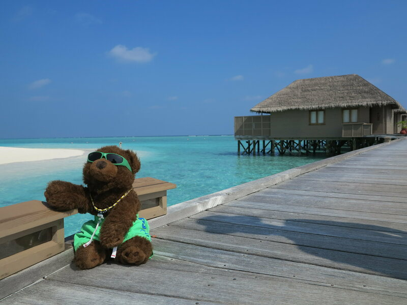 The Worlds Best Travel Consultant Teddy Bear