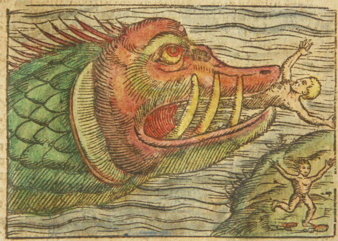 Storms have taken the place of sea monsters as a proxy for ecological anxiety.