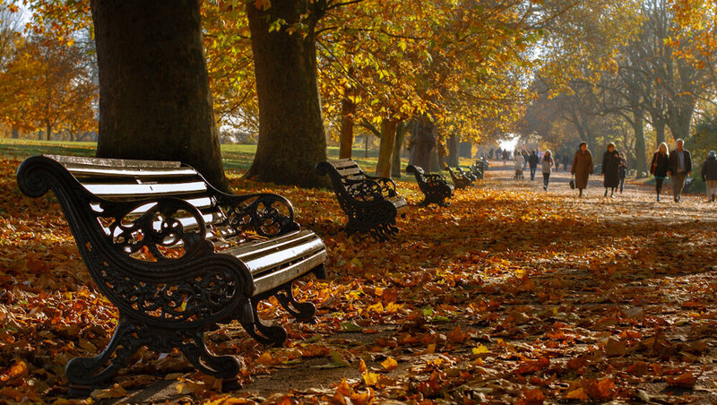 London In The Autumn. (Or, If You Prefer, Fall.)