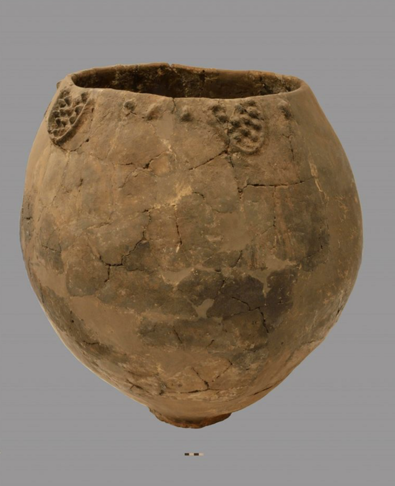 A Neolithic jar from Georgia contains the earliest known evidence of winemaking.