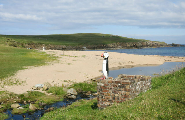 Unstfest celebrates puffins, among other features of Unst.