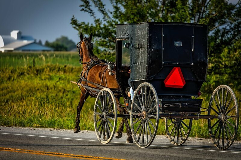 Amish gene can make them live 10 years longer and avoid diabetes