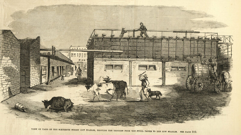 One of Frank Leslie's damning illustrations, depicting the view of the 16th Street cow stable yard.