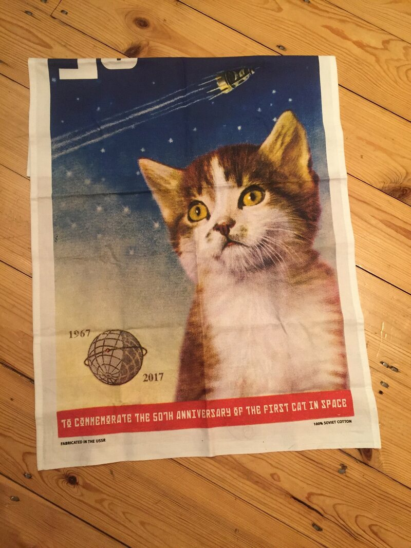 Even the commemorative tea towel that started it all has a picture of the wrong cat.