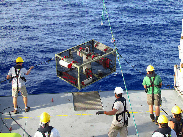 Researchers pull up a trap fresh from the Mariana Trench.