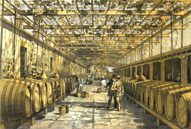 Madeira production at Cossart, Gordon & Co.