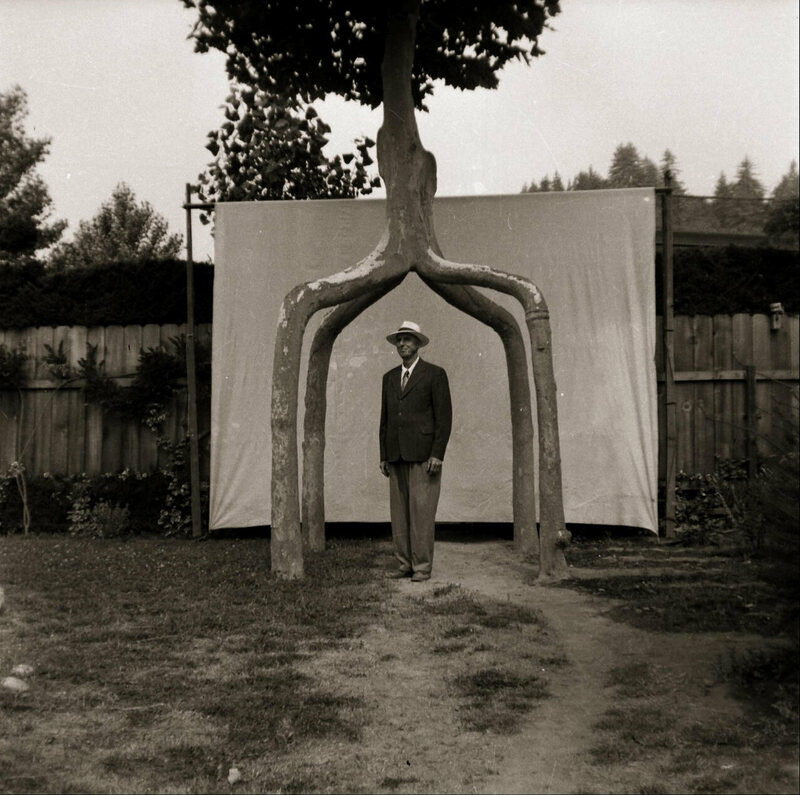Axel Erlandson stands beneath the Four-Legged Giant.