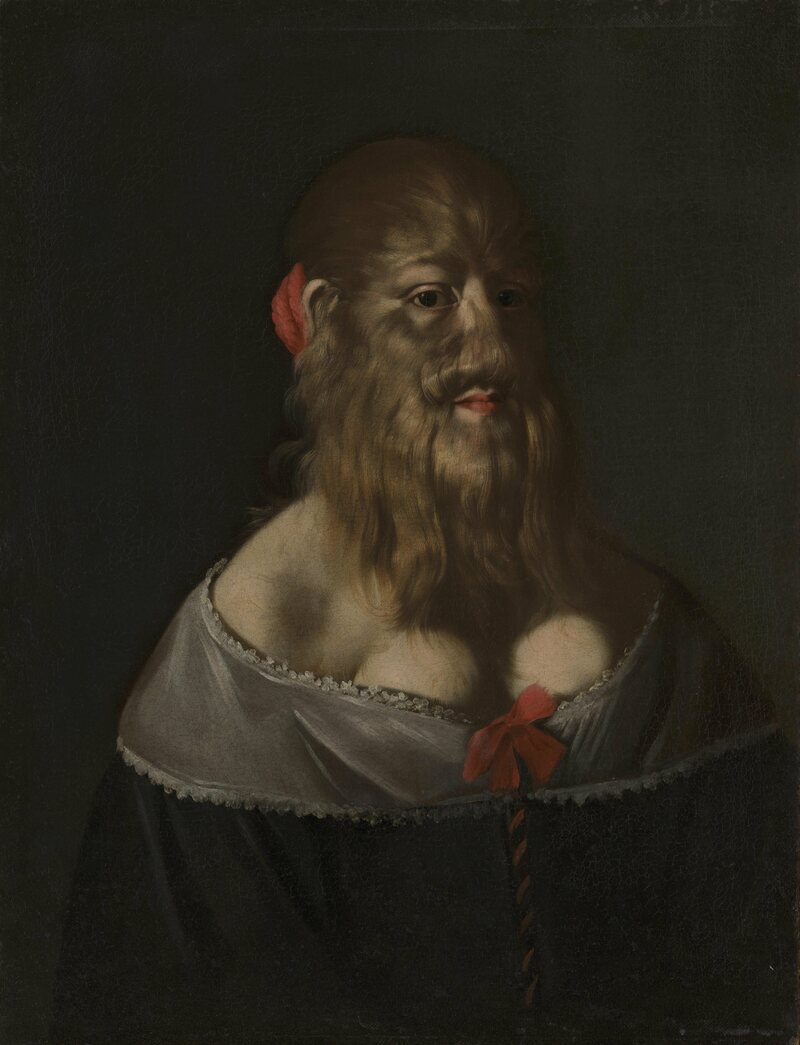 The Wellcome Collections' recently acquired portrait of Barbara van Beck, dating to the 1640s.