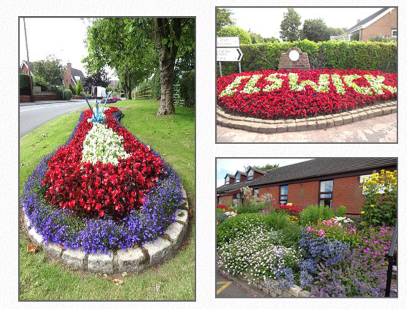 A selection of Elswick's winning floral displays.